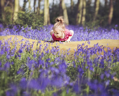 Bluebell photography Oxfordshire 1