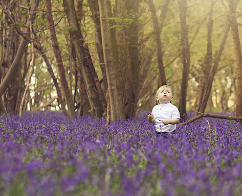 Bluebell photography Oxfordshire 3